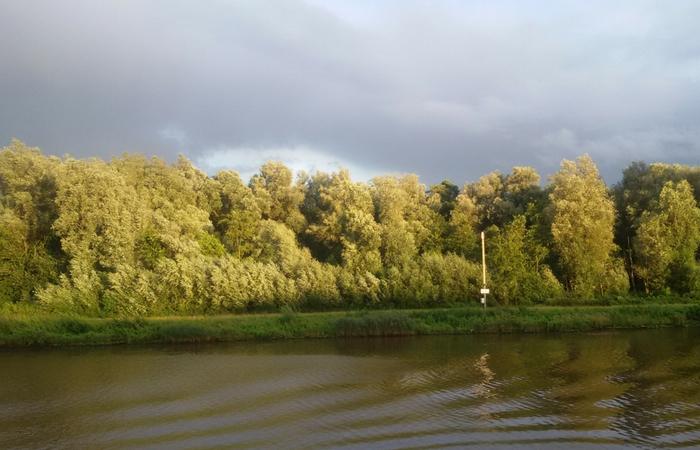 navegando por el río Elba