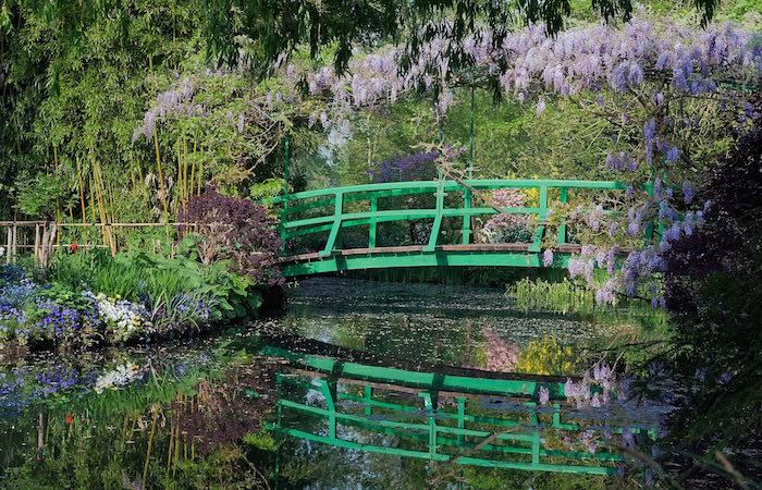Puente Japonés con glicinias Foto © Fondation Claude Monet – Giverny