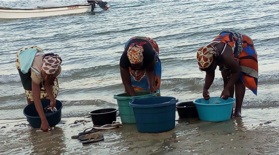 mujeres lavando su compra de pescados