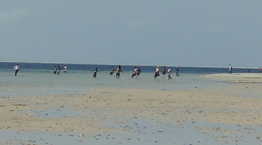 pescadores recogiendo la red cuando la marea está baja