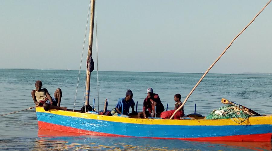 pescadores de día llegando al atardecer para vender sus pescados