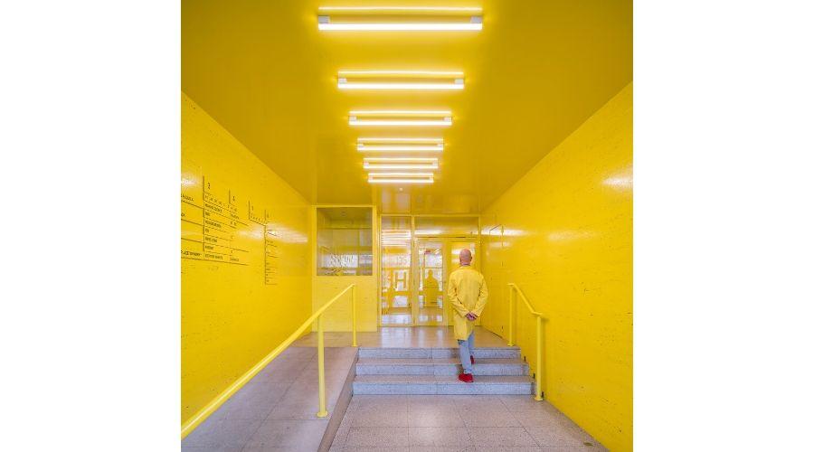 MARIANO. Oficinas LH135 del estudio de diseño, interiorismo y arquitectura (2019) ©Open House Madrid