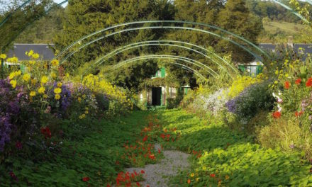 Replantando los jardines de Claude Monet en Giverny