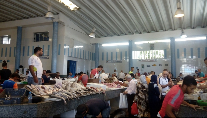 Lonja del pescado en la Medina