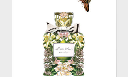 Perfumes para recrear la vista