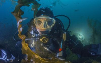 Sylvia Earle, la susurradora de peces