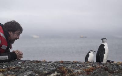 La Antártida, el viaje iniciático de los hermanos Bardem