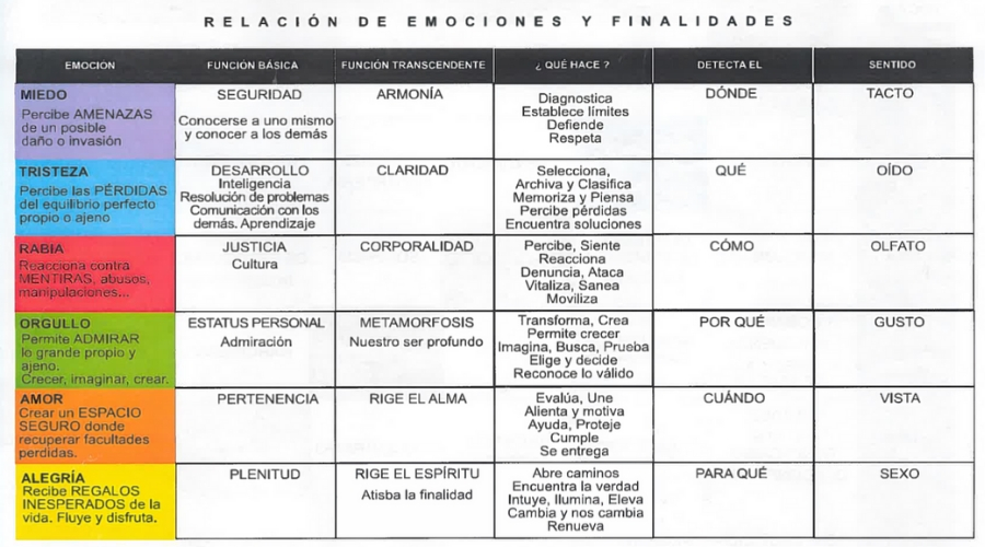 Las Emociones y sus Finalidades por Arancha Benito