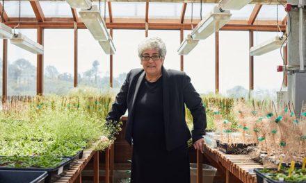 Las biólogas Chory y Myrna Díaz, Premio Princesa de Asturias 2019