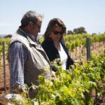 Esther Pinuaga: «Lanzarme sola en el mundo del vino fue lo más difícil»
